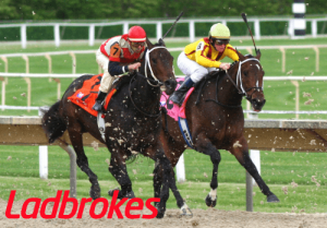 Ladbrokes horse racing feature4