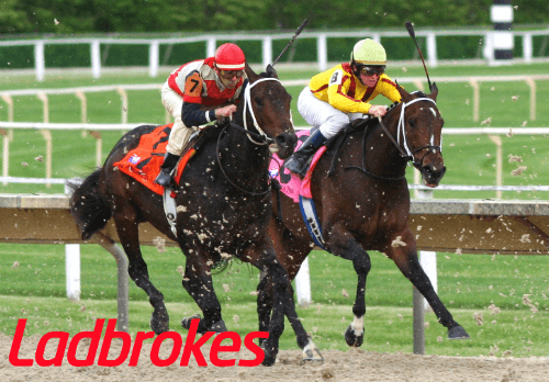 Ladbrokes Horse Racing Betting- How to bet and bonus